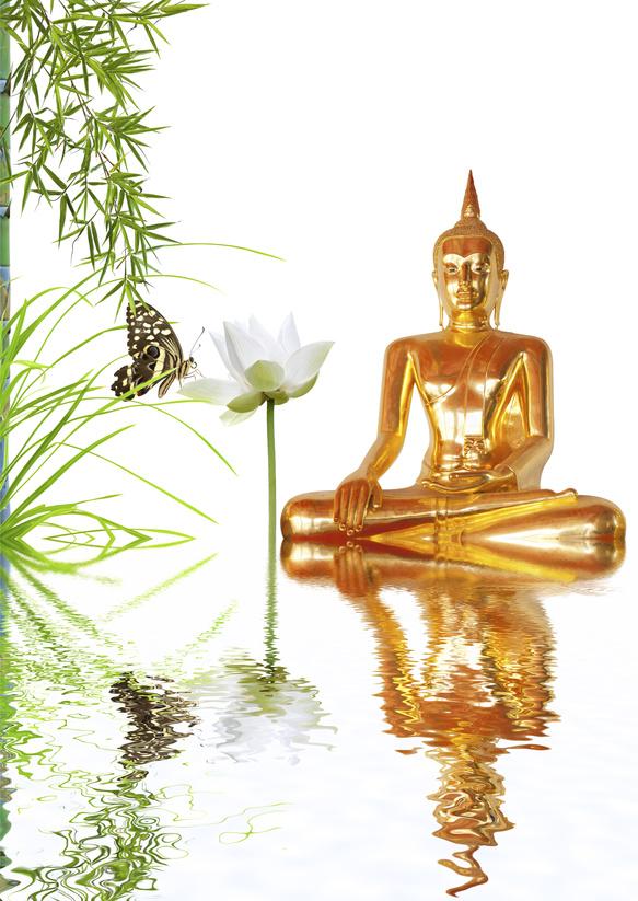 bouddha doré, lotus, bambou et papillon